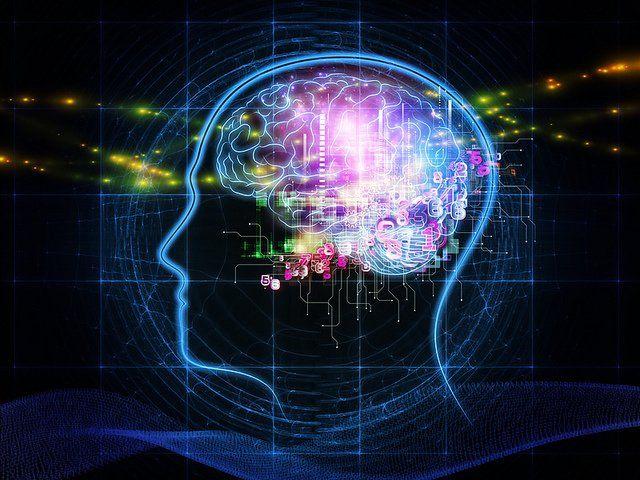 Représentation du cerveau de l'homme.