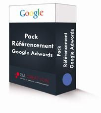 Pack référencement Google Adwords Premium