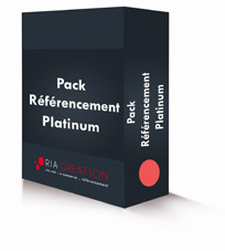 Pack référencement site internet Platinum
